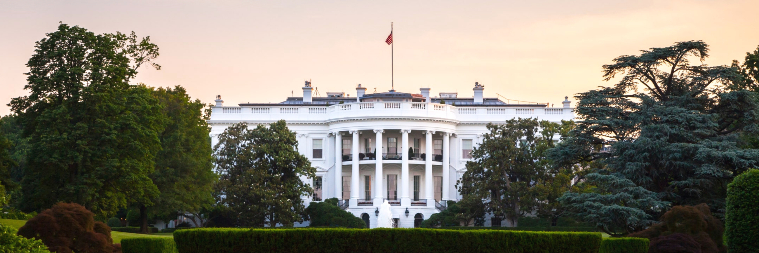 business-articles2020 US presidential election heats up, what's in store for the US dollar?